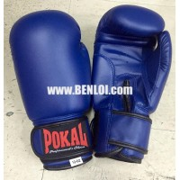 Pokal PVC Boxing Gloves and Handwrap Bundle